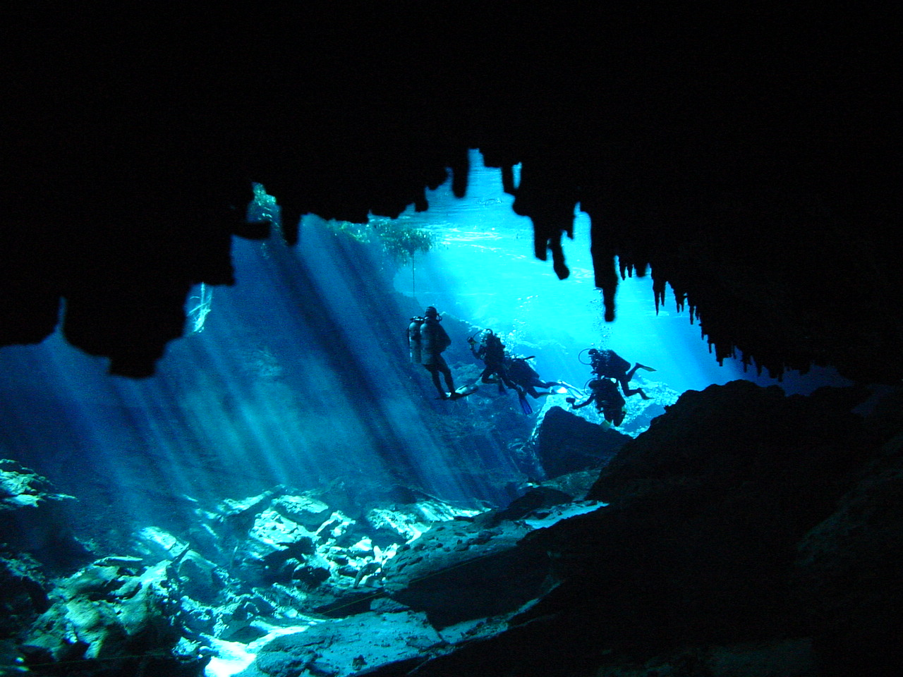 Cave Diving, Cavern Diving In Cenotes In Playa Del Carmen